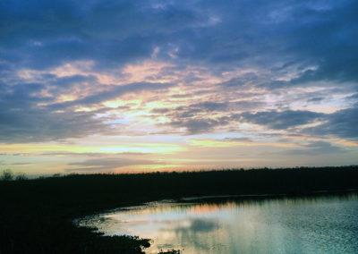 16 Levée du soleil dans le marais